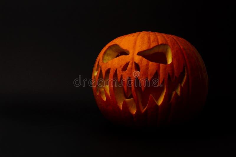 Real jack o lantern for halloween stock image