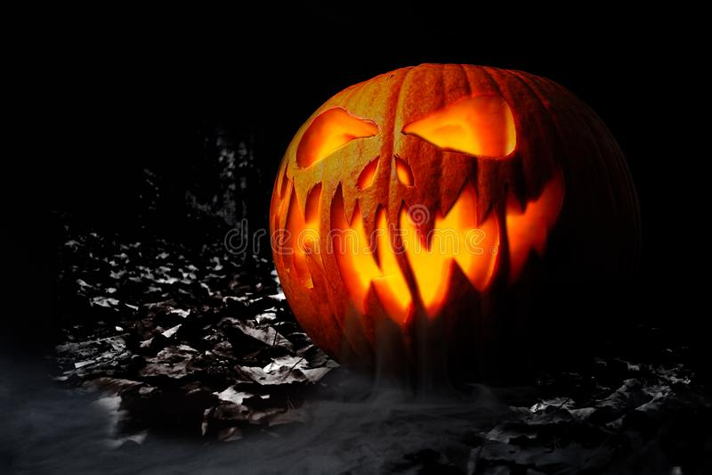 Real jack o lantern for halloween stock photo