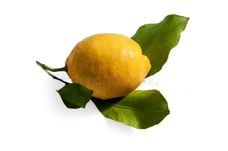 Real lemon with leaves isolated on white background royalty free stock photos