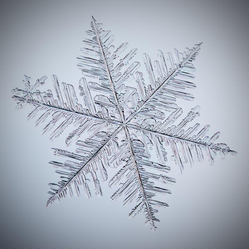 Real macro snowflake stock photo