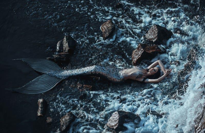 The real mermaid royalty free stock photos