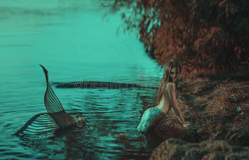The real mermaid stock images
