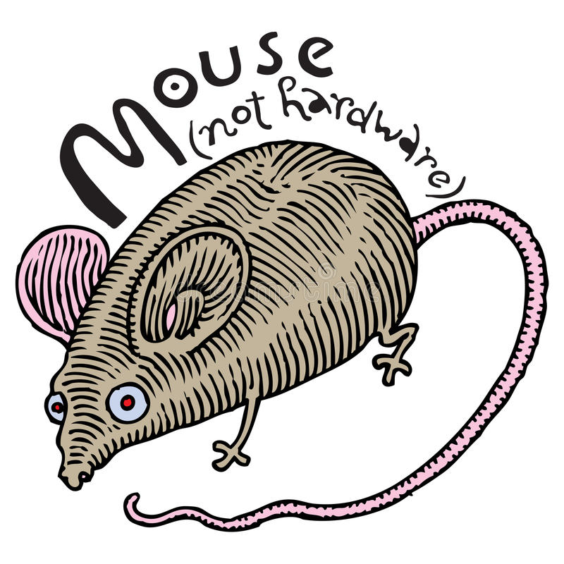 Download Real Mouse (not Hardware) Stock Image - Image: 16269891
