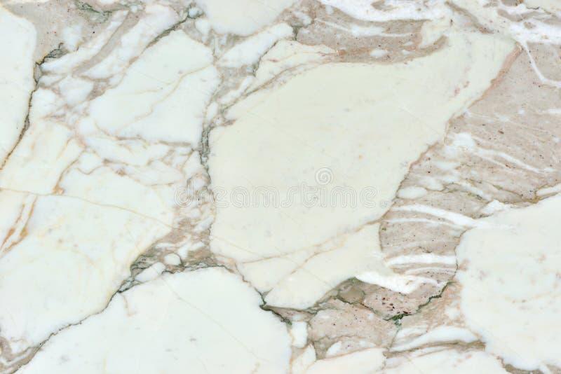 Real natural ` Calacatta Gold ` texture pattern. stock image