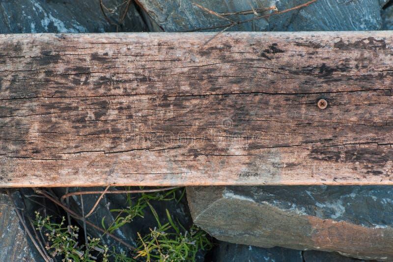Real natural wood texture stock image