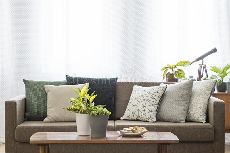 Real photo of a couch with pillows standing behind a table with stock images
