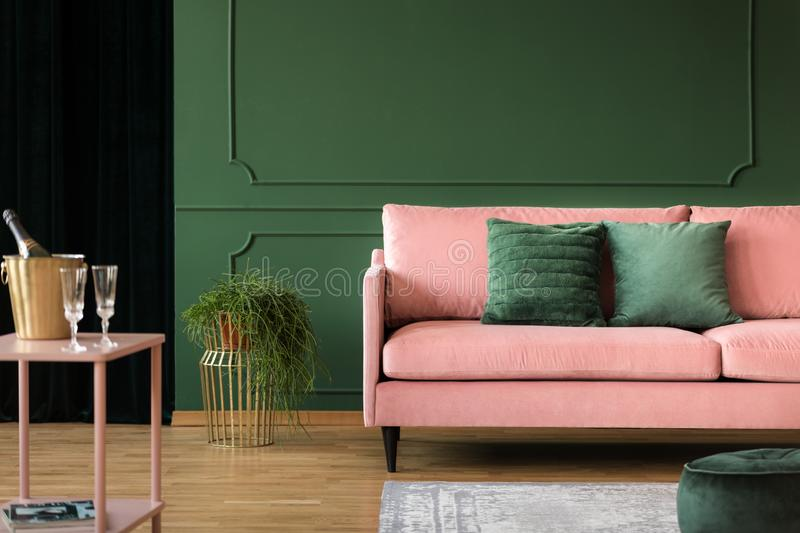 Real photo of an elegant living room interior with a pink sofa, green wall and champagne. Real photo of an elegant living room interior with a pink sofa, green royalty free stock photography