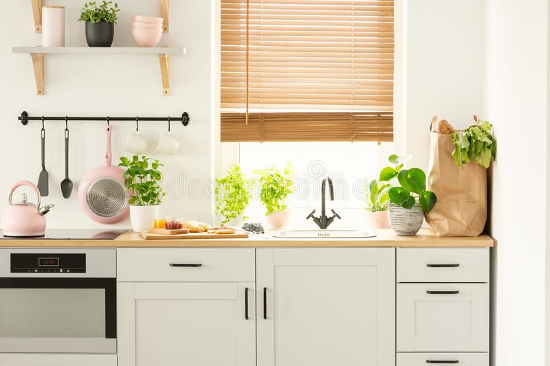 Real photo of a kitchen cupboards, countertop with plants, food, and shopping bag, and window with blinds in a kitchen interior royalty free stock photography