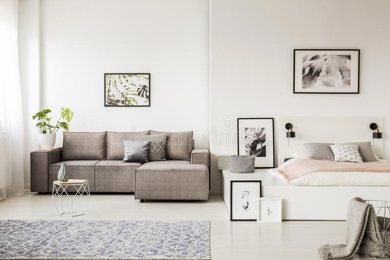 Real photo of a single person, open space apartment interior wit. H a gray corner sofa in the living room and a white bed with pink blanket in the bedroom stock photos