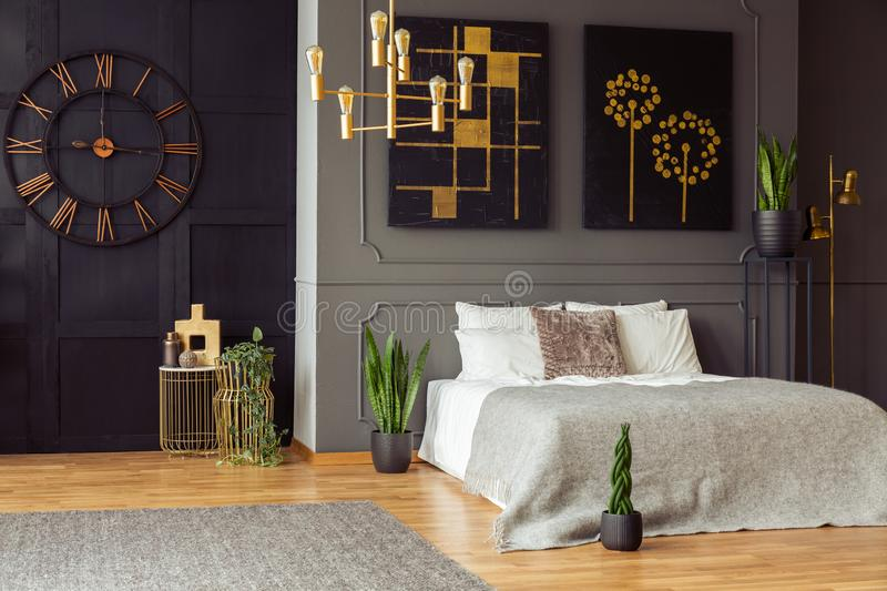 Real photo of a spacious bedroom interior with grey walls, clock, paintings, plants, bed and golden accents. Real photo of a spacious bedroom interior with grey stock photos