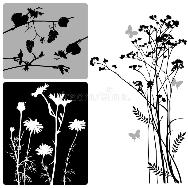 Free Real Plants Silhouette - Vector Set Stock Image - 9602811