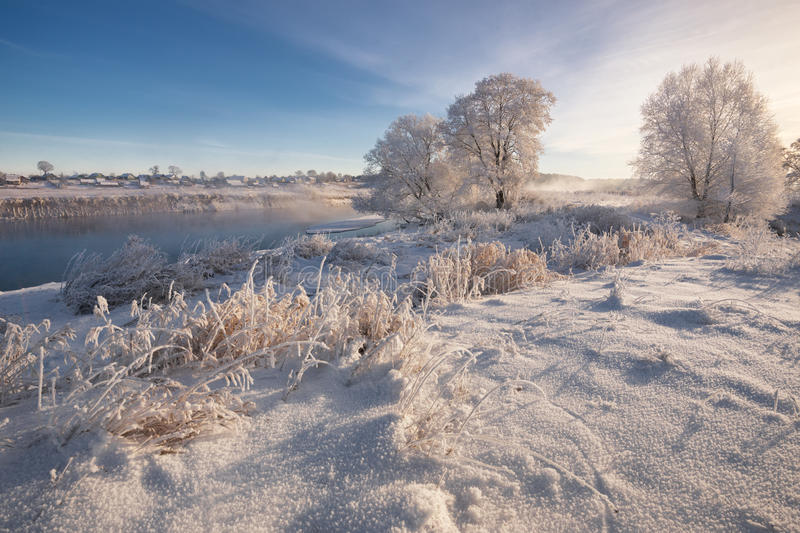 A Real Russian Winter. Morning Frosty Winter Landscape With Dazzling White Snow And Hoarfrost,River And Saturated Blue Sky. Foggy River Bank With Frost-Covered royalty free stock photography