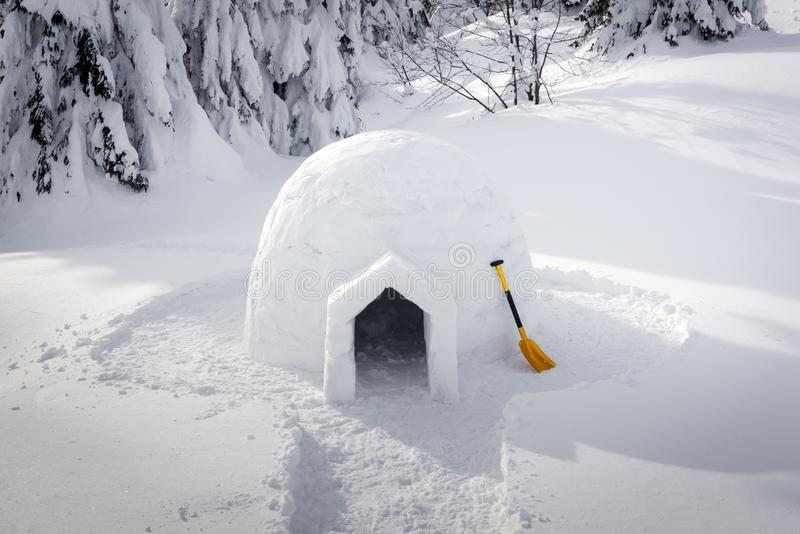Real snow igloo house in the winter Carpathian mountains. Snow-covered firs on the background stock photos