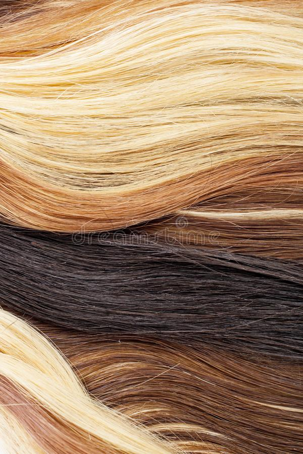 Real woman hair texture. Human hair weft, Dry hair with silky volumes. Real european human hair wallpaper texture. Brown blond dar. K blonde and black. Hair stock photography