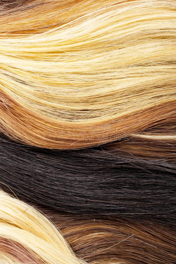 Real woman hair texture. Human hair weft, Dry hair with silky volumes. Real european human hair wallpaper texture. Brown. Blond dark blonde and black. Texture royalty free stock images