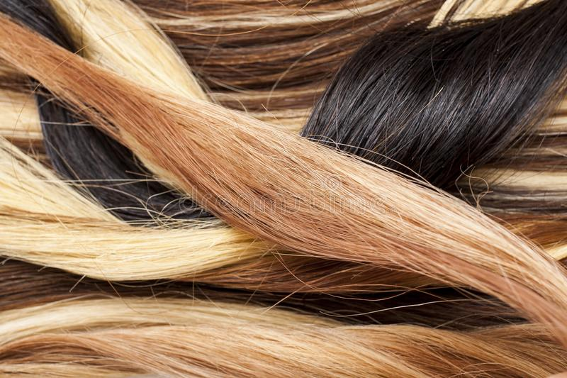 Real woman hair texture. Human hair weft, dry hair with silky volumes. Real european human hair wallpaper texture. Brown. Blond dark blonde and black. Photo royalty free stock images