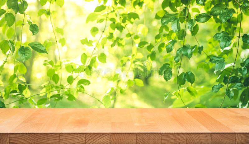Real wood table top texture on leaf tree garden background royalty free stock photography