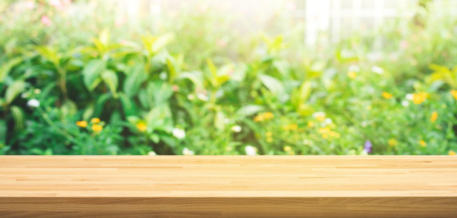 Real wood table top texture on leaf tree garden background. For create product display or design key visual royalty free stock photo