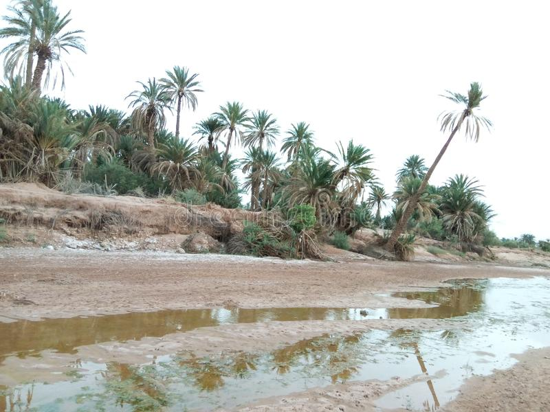 Reala pic naturalny rzeczny Algeria obraz stock