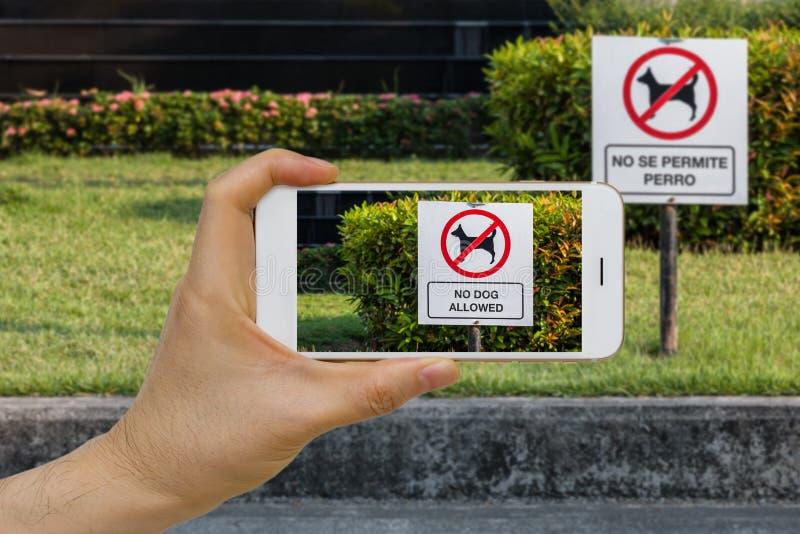 Realidad aumentada en tiempo real de la traducción de lengua, AR, concepto del App usando Smartphone IOT para traducir el texto e imágenes de archivo libres de regalías
