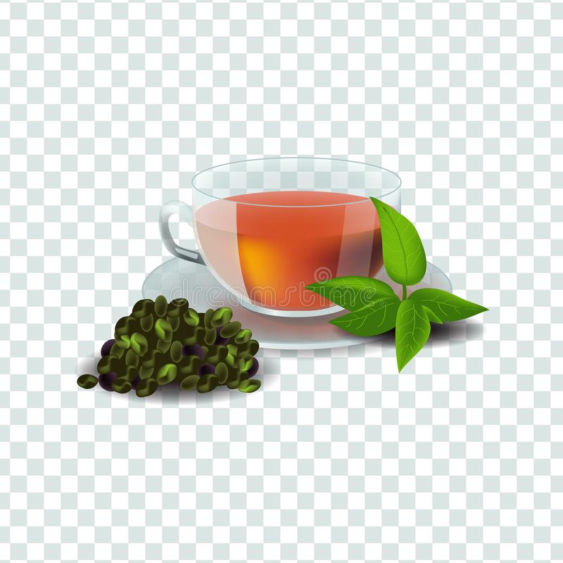 Vector illustration in realism style about green or herbal tea. Realism style vector illustration isolated on transparent background. Cup of green or herbal tea stock illustration