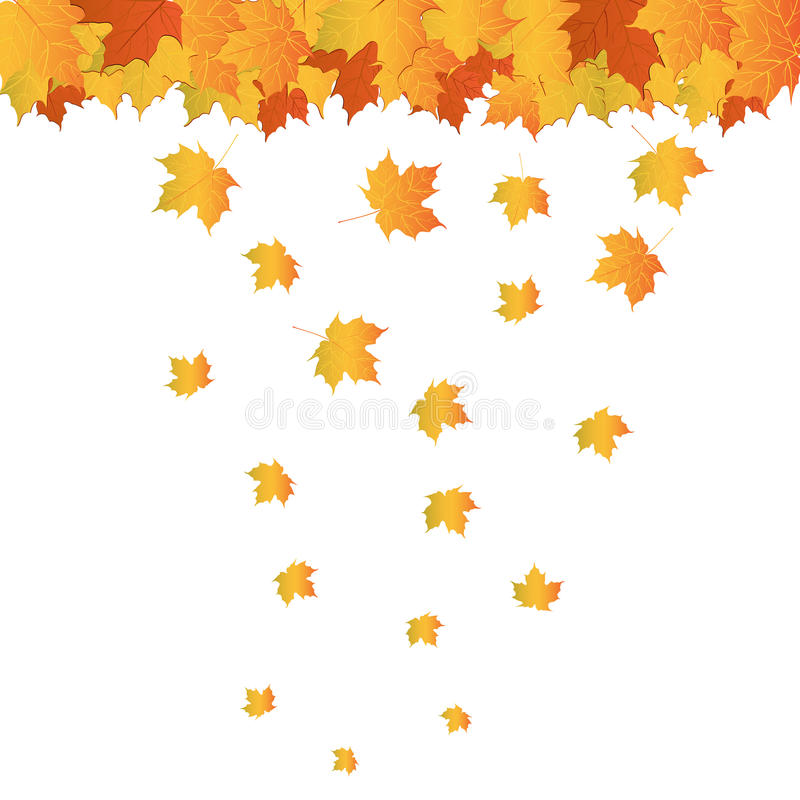 Free Realistic Autumn Leafs Stock Photography - 20643352