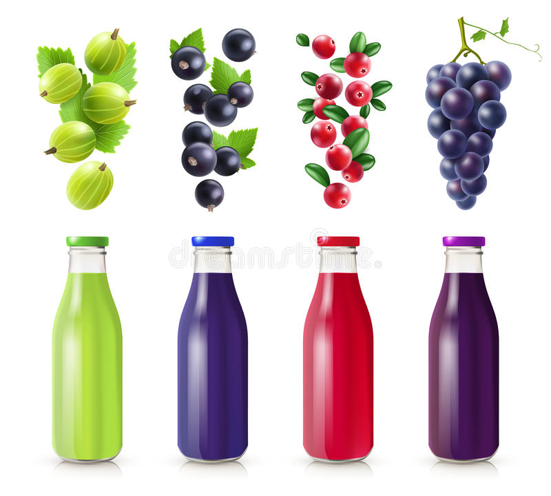 Realistic Bottles With Berry Juice Set. From gooseberry black currant cranberry and grape vector illustration vector illustration