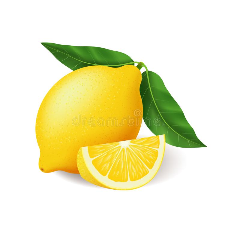 Realistic bright yellow lemon with green leaf whole and sliced vector vector illustration