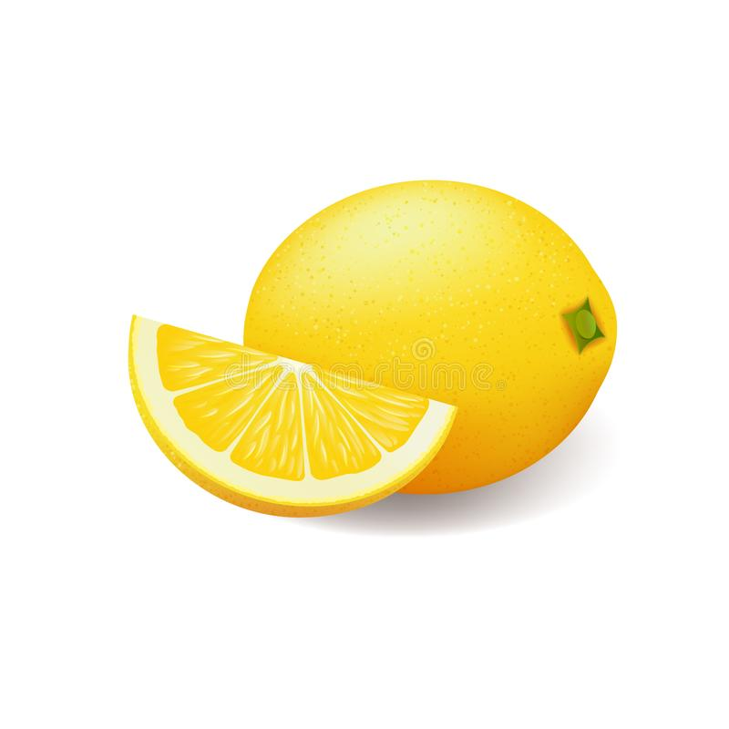 Realistic bright yellow lemon whole and sliced vector stock illustration