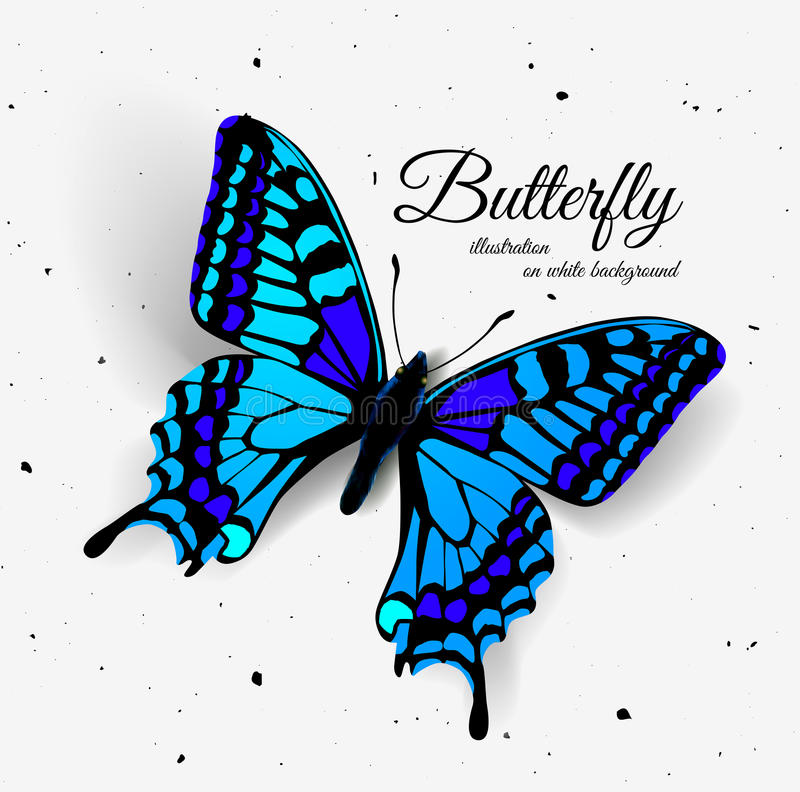 Realistic butterfly with shadow and noise. stock illustration