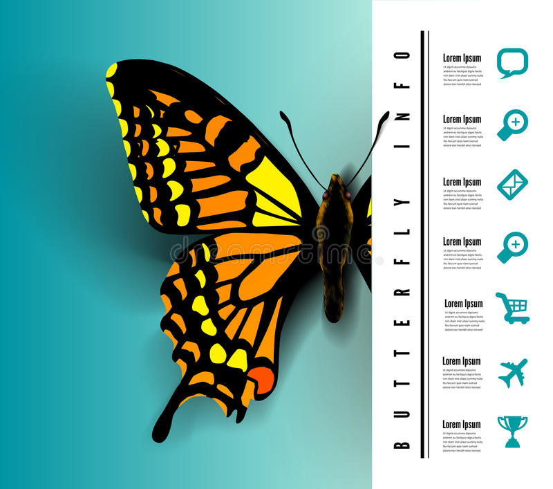 Realistic butterfly top view royalty free illustration