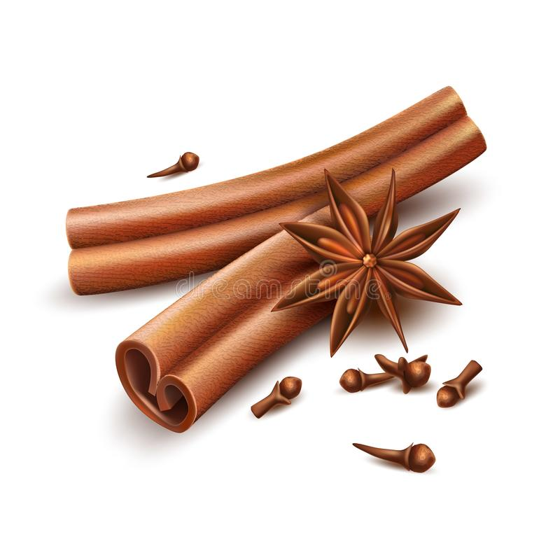 Realistic cinnamon cloves dried anise star vector. Realistic cinnamon, cloves and dried anise star. Seasoning, spices and condements for christmas, winter vector illustration