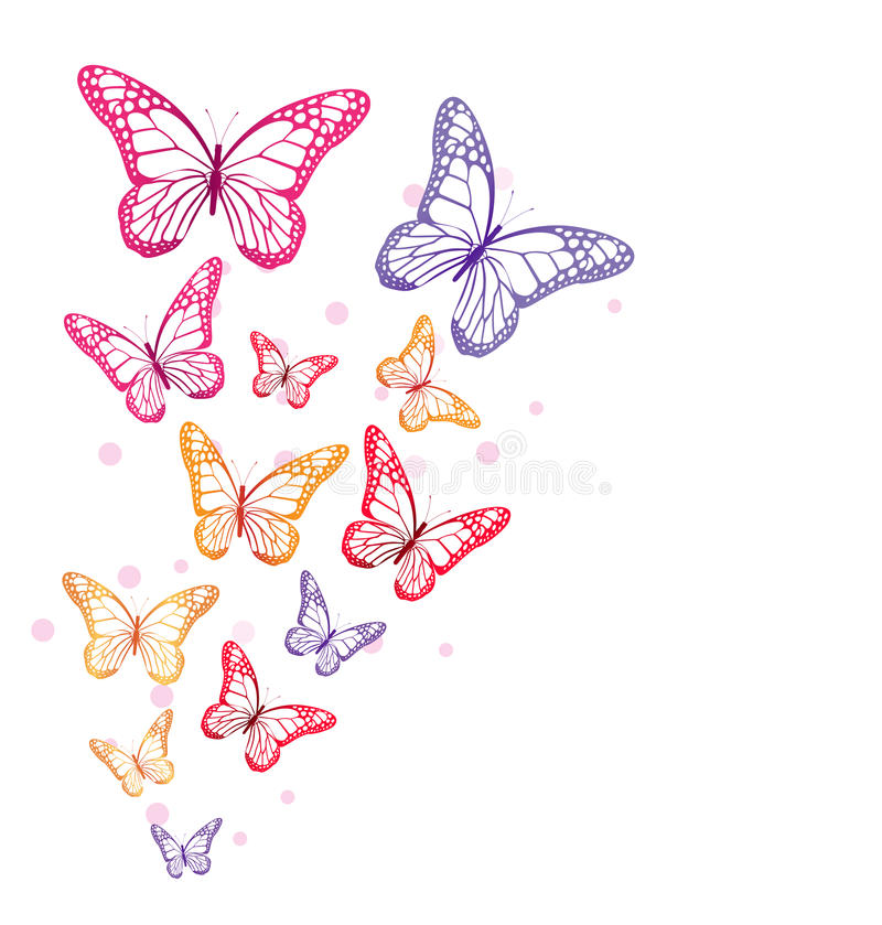 Realistic Colorful Butterflies Isolated for Spring. Editable Vector Illustration royalty free illustration