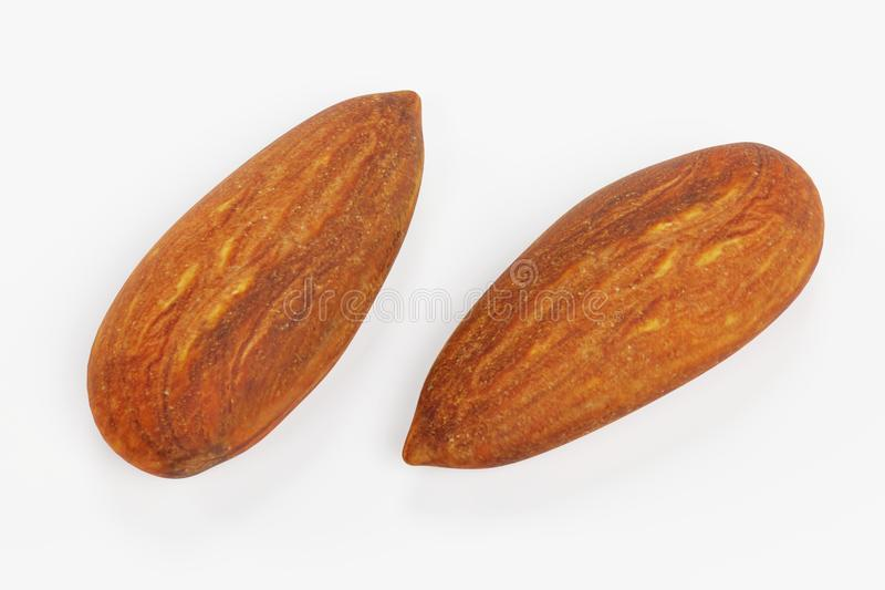 3D Render of Almond. Realistic 3D Render of Almond stock illustration