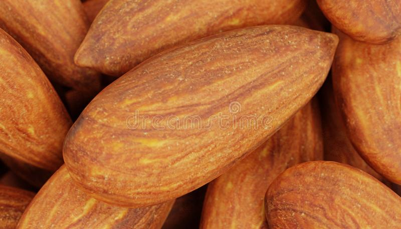 3D Render of Almonds. Realistic 3D Render of Almonds stock illustration