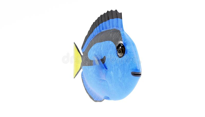 3D Render of Blue Tang Fish. Realistic 3D Render of Blue Tang Fish vector illustration