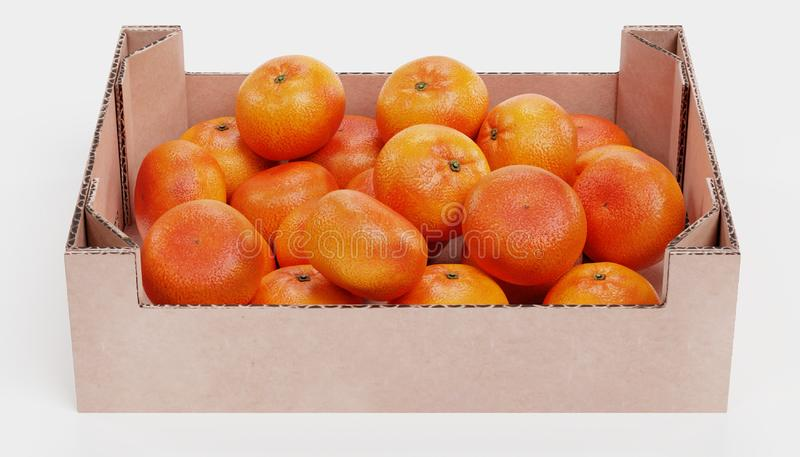 3d Render of Tangeringes in Box royalty free stock photos