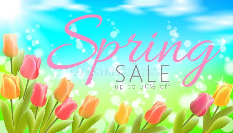 Realistic 3d spring sale script lettering web banner template. Color tulip flowers grass blue sky blue background flyer. Promotional square social poster vector royalty free illustration