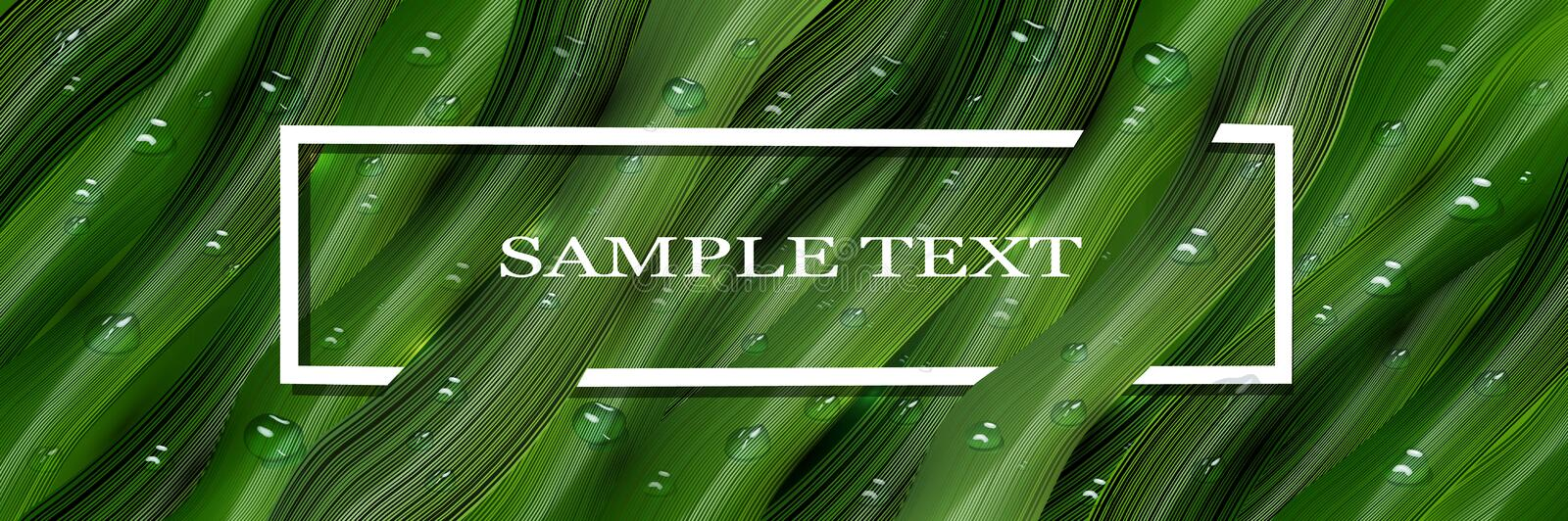 3d, three-dimensional water droplets and voluminous, the green leaves in the style of realism. realistic banner, web screen for. Realistic 3D water drops on vector illustration