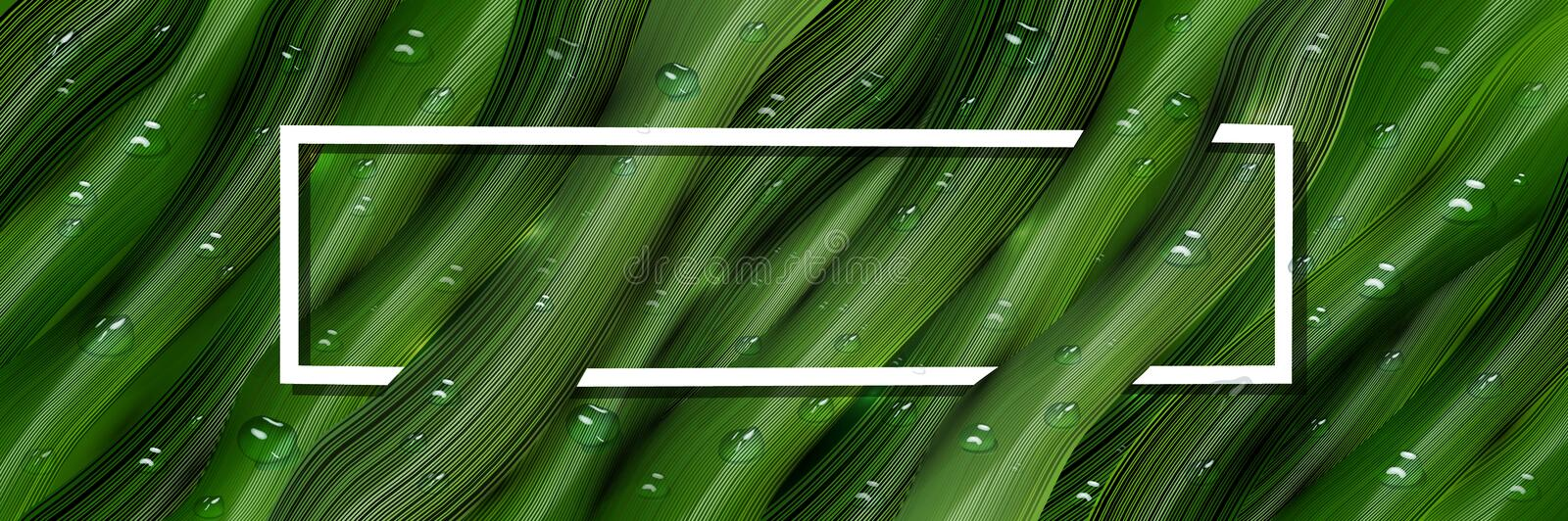 3d, three-dimensional water drops and three-dimensional, green leaves in the style of realism. realistic tropical banner, web. Realistic 3D water drops on green stock illustration