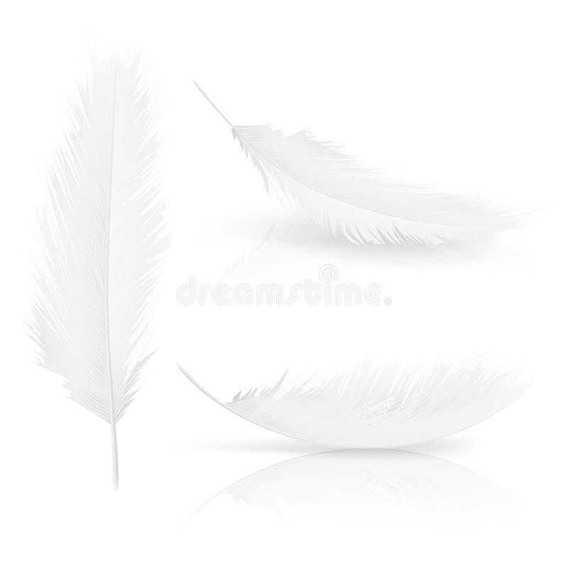 Vector realisitc 3d white bird, angel feathers set vector illustration