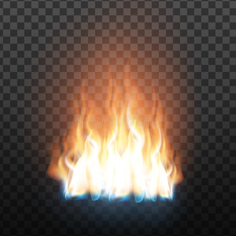 Realistic Decorative Flammable Fire Flame Vector royalty free illustration