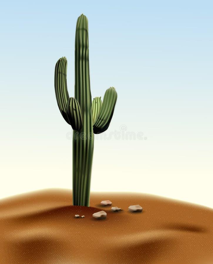 Realistic desert cactus Carnegia giant. Plant of desert among sand and rocks in habitat. Realistic 3d volume vector illustration royalty free illustration