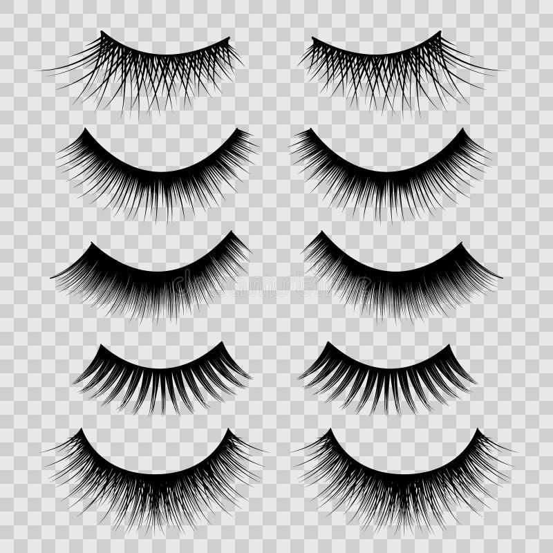Free Realistic Detailed 3d Feminine Black Lashes Set. Vector Royalty Free Stock Image - 112179136