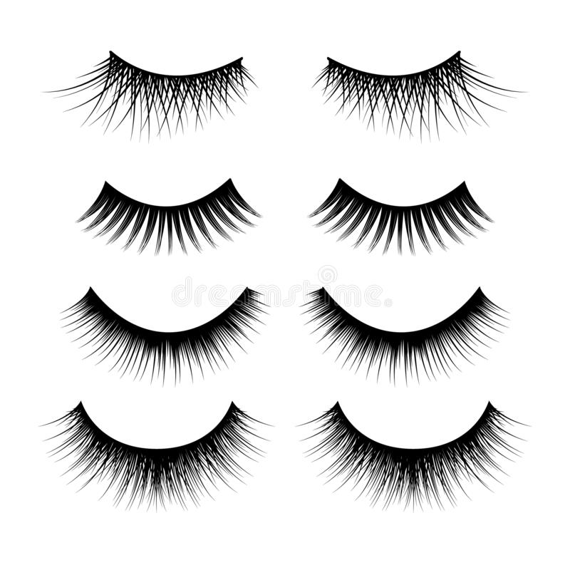 Realistic Detailed 3d Feminine Black Lashes Set. Vector. Realistic Detailed 3d Feminine Black Lashes Set Isolated on a White Background Beauty Product. Vector vector illustration