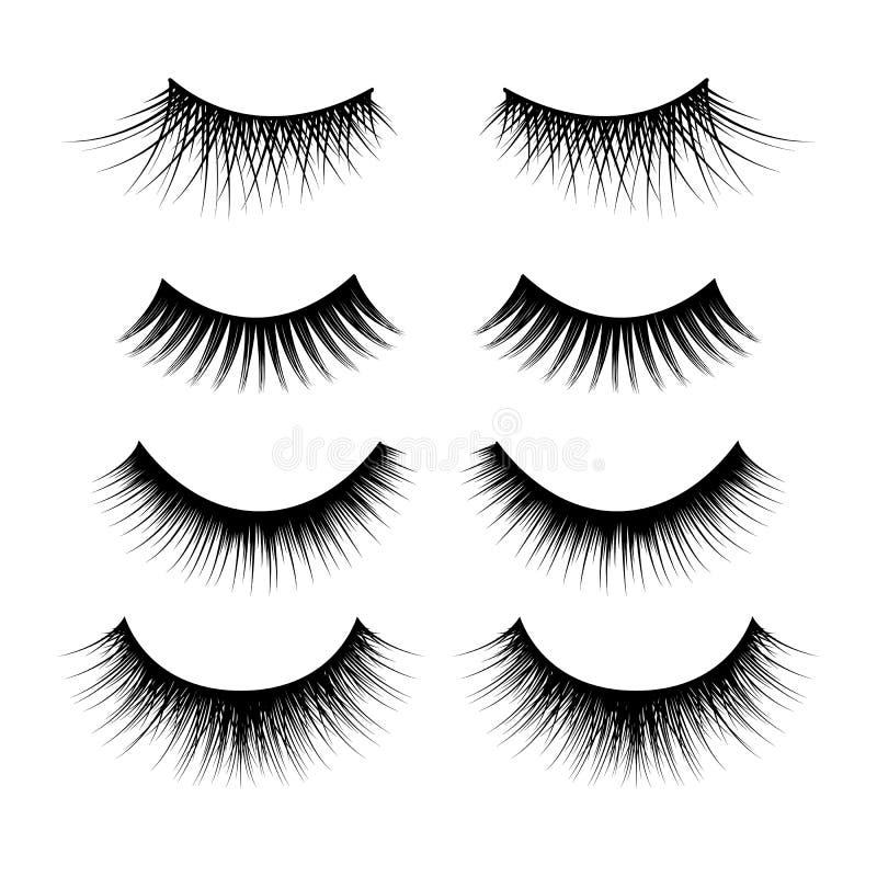 Realistic Detailed 3d Feminine Black Lashes Set. Vector vector illustration
