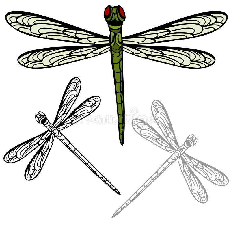 Free Realistic Dragonfly Stock Photography - 16471002