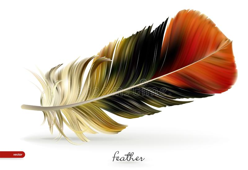 Realistic feathers - vector illustration. Isolated on white background stock illustration