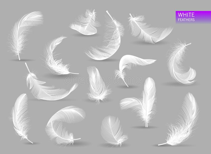 Realistic feathers. White bird falling feather isolated on white background vector collection. Illustration of feather royalty free illustration