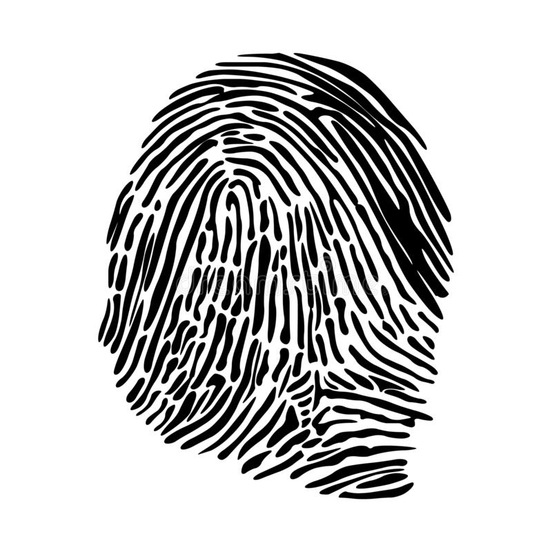 Realistic fingerprint isolated on a white background. stock images